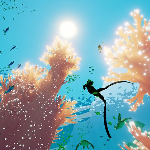 Water, Blue, Sky, Tree, Illustration, Organism, Design, Art, Screenshot, Sunlight,
