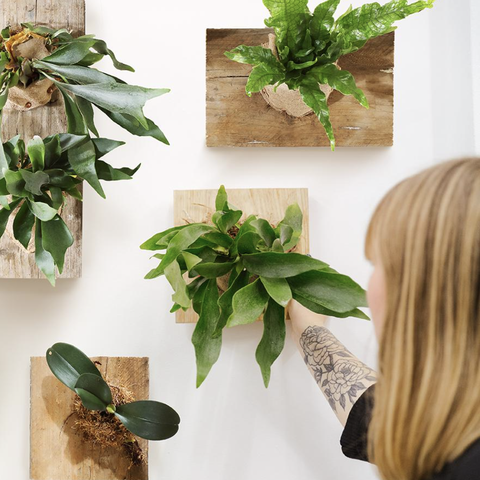 5 mindful diy projects to decorate your home