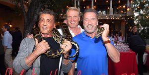 Stallone, Schwarzenegger y Lundgren