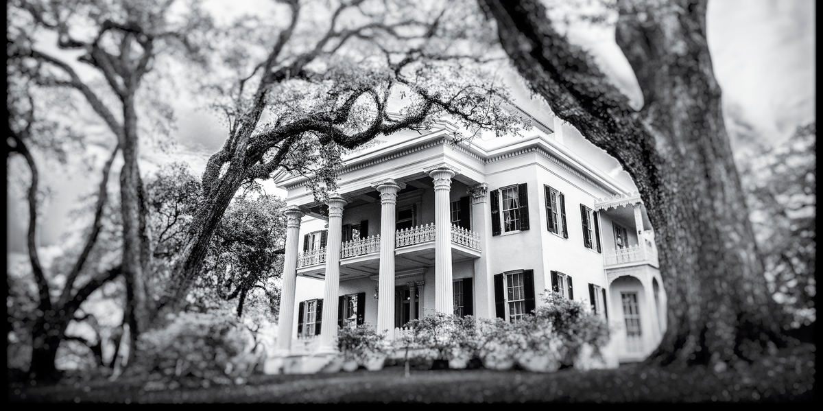 Antebellum Houses of the American South: What Happens Now?