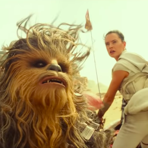 Star Wars: The Rise of Skywalker, Rey and Chewbacca