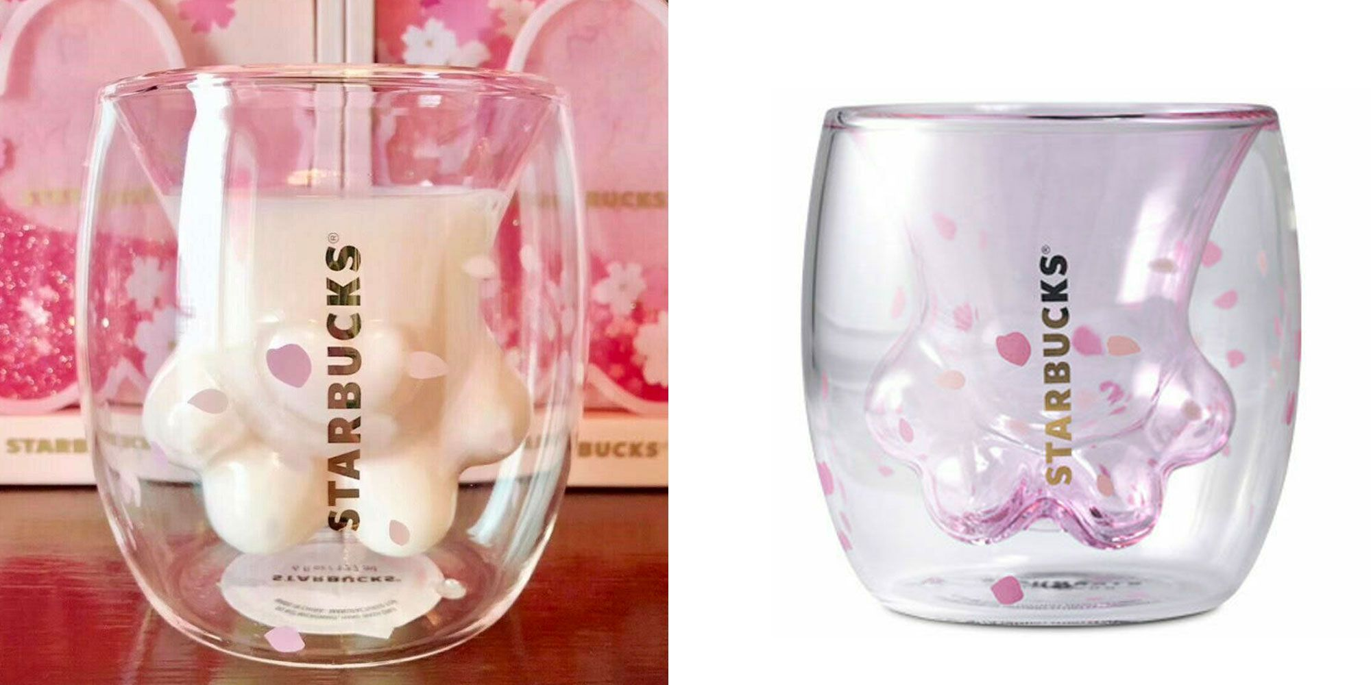 Limited Edition Cat Paw Cups Lead To Brawl In A Starbucks In China