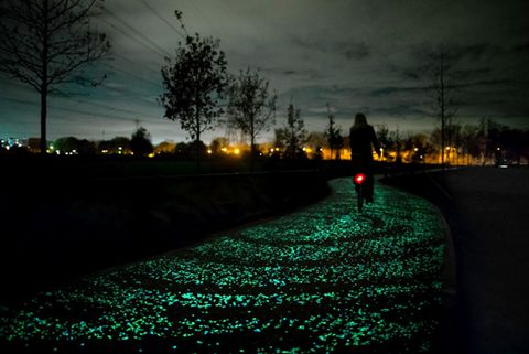 Starry Night Bike Path