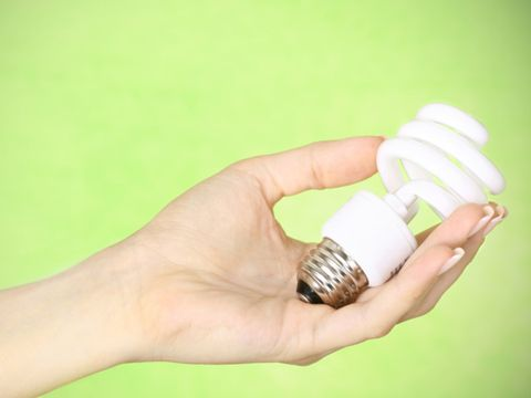 hand holding a CFL lightbulb
