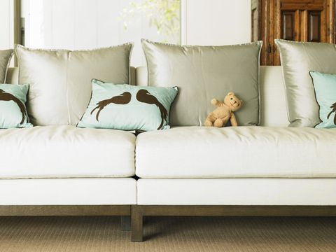 common household allergen: couch pillows