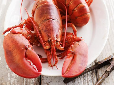 Love your lobster