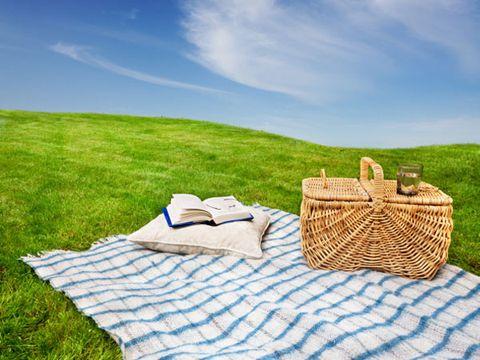 allergy trigger: picnics outside