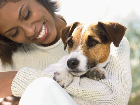 Keep Your Pet Healthy All Winter Long
