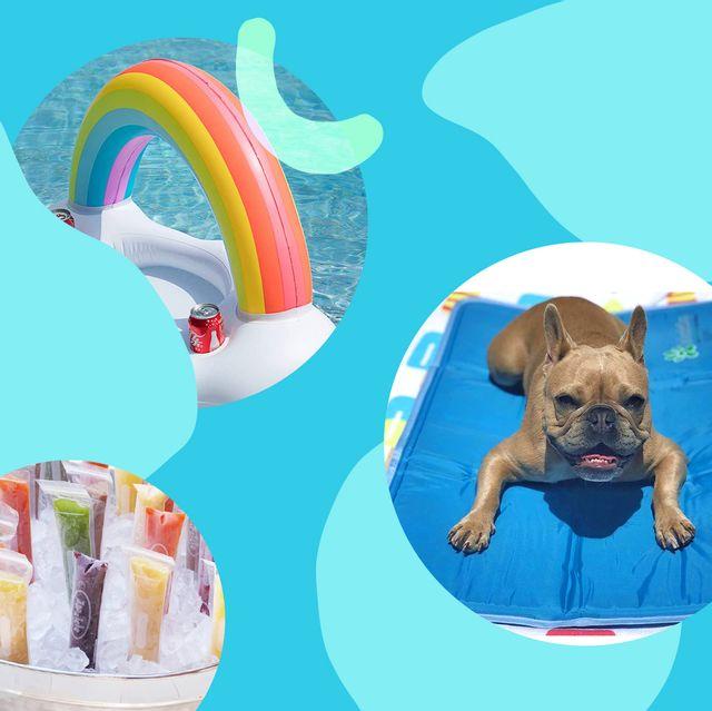 pool float, ice cream maker, popsicle molds, dog cooling mat