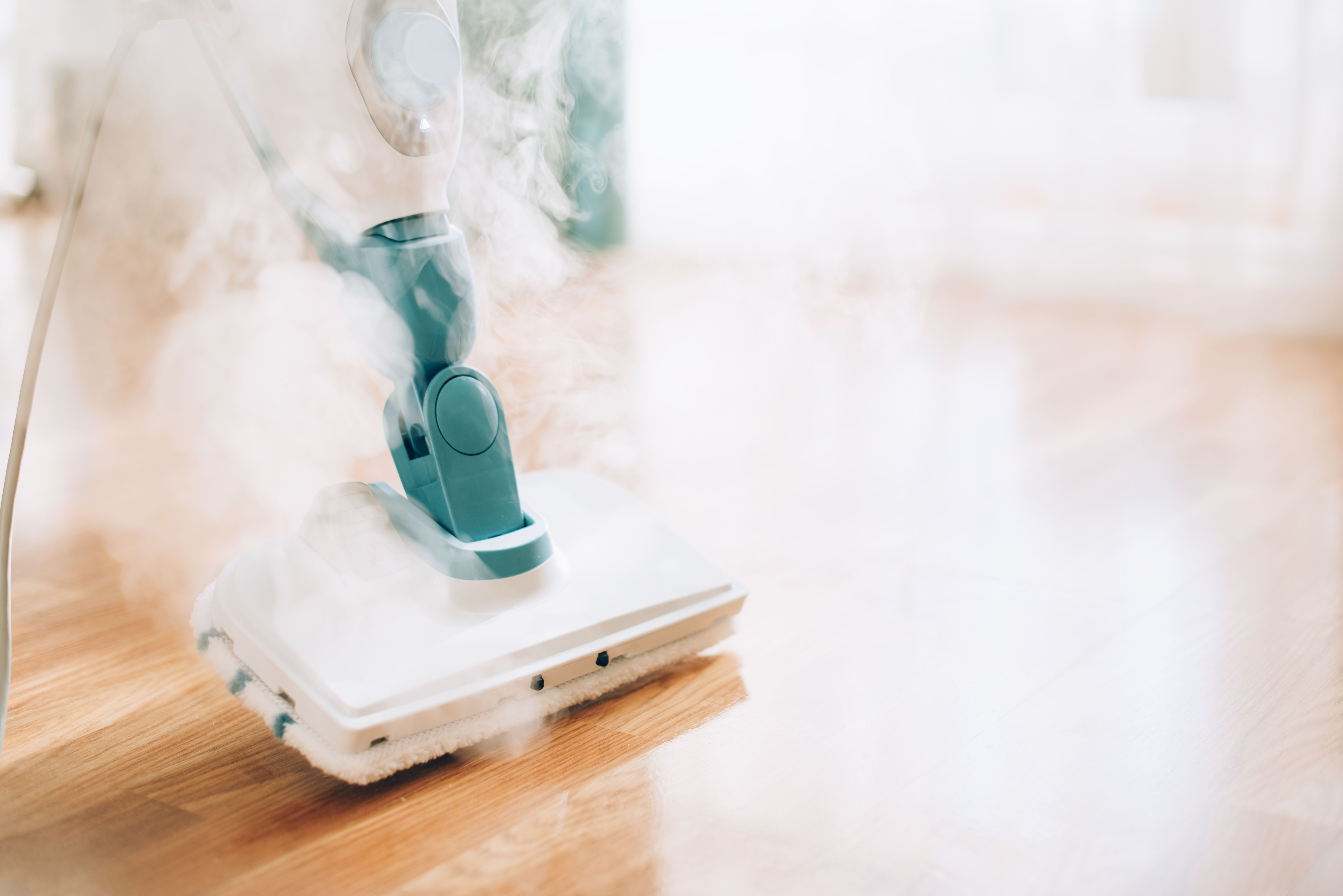 The 9 Best Steam Cleaners Of 2020 Steam Cleaners Reviewers Love
