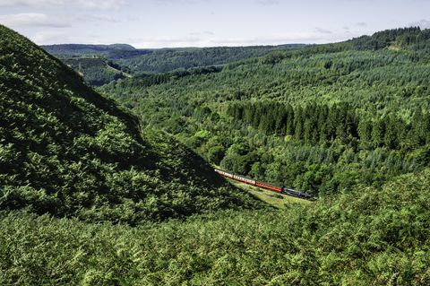 Steam train rides, North York Moors, Yorkshire, UK