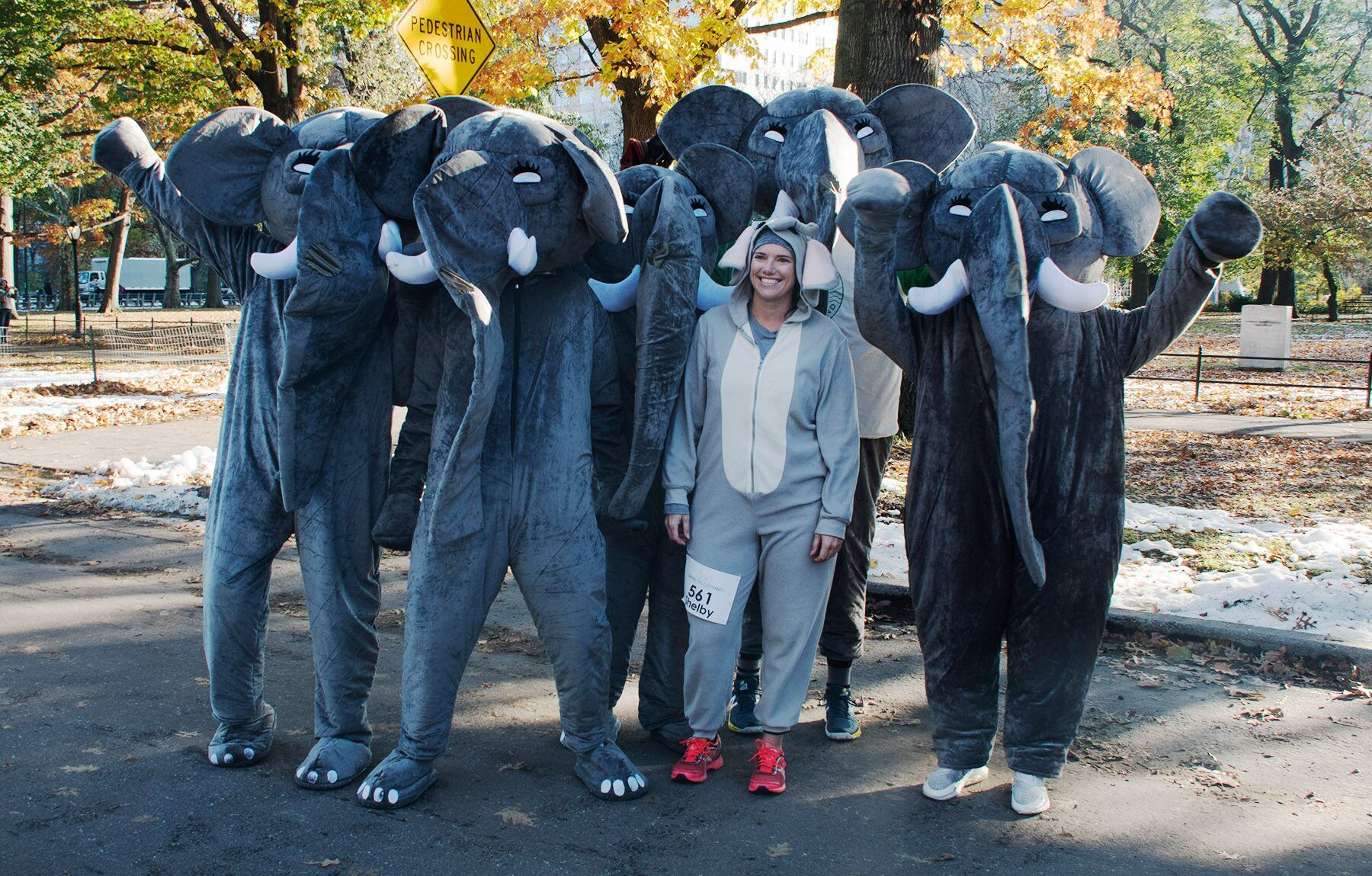Run for the Gentle Giants at Saving the Elephants 10K
