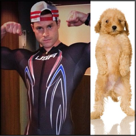 Who's cuter: Steven Langton, or a puppy?