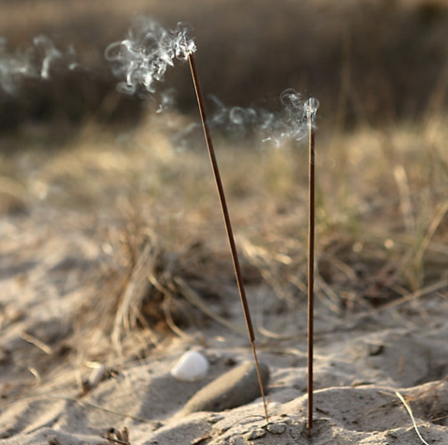 flyaway sticks in sand
