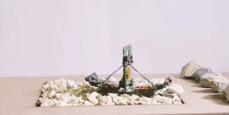 Robotic Ants Function Just Like Real Ones