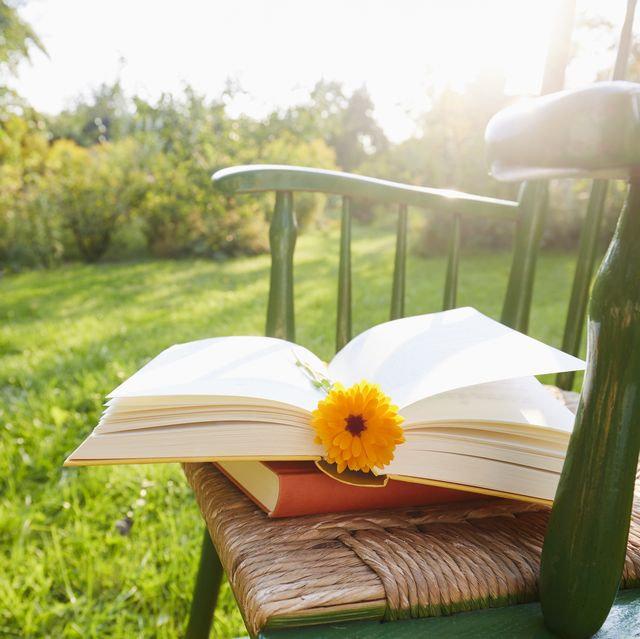 still life of an open book with a flower as bookmark on a chair in garden against sunlight