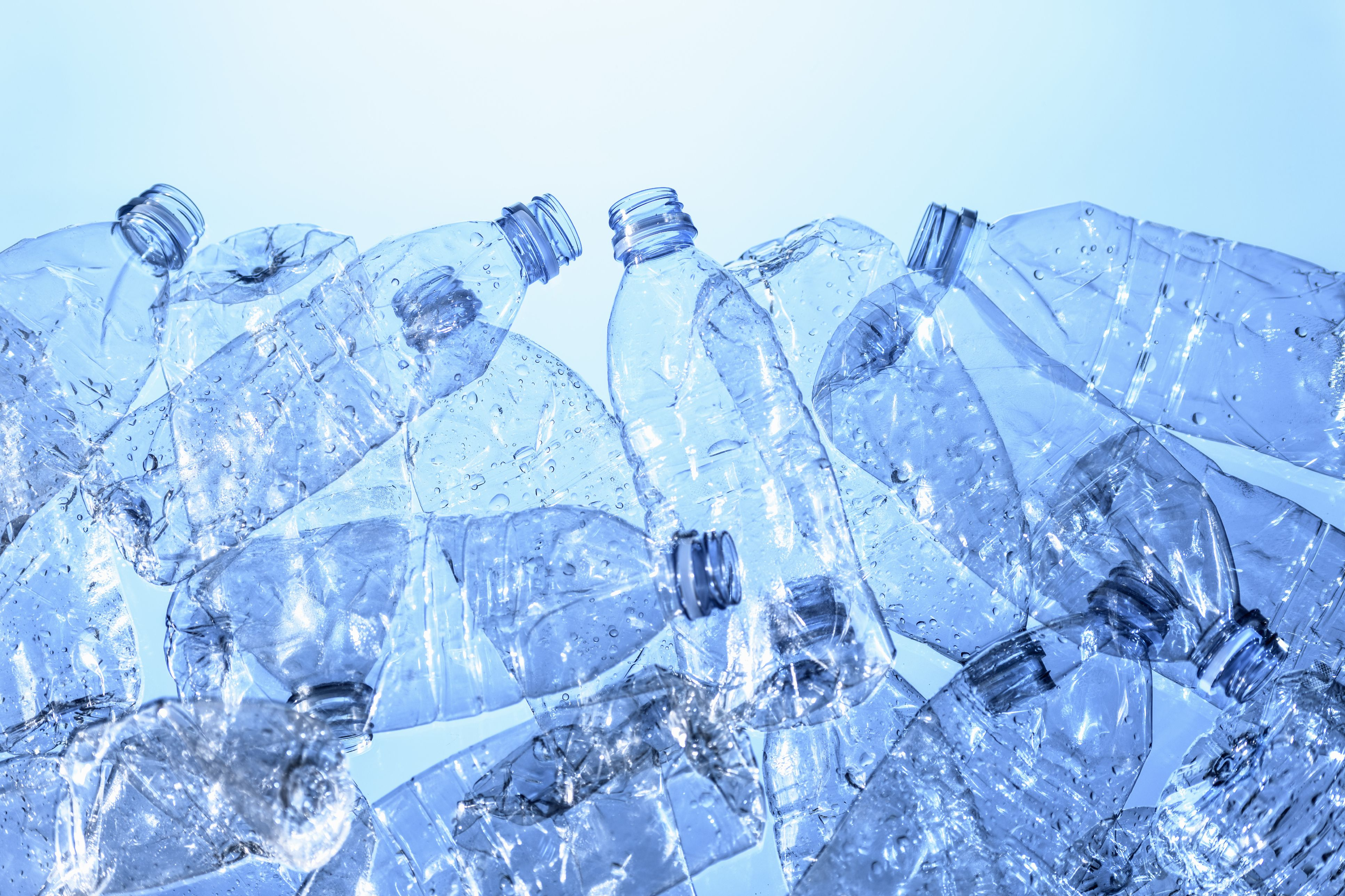 plastic found in the bodies of every single human participant in new
