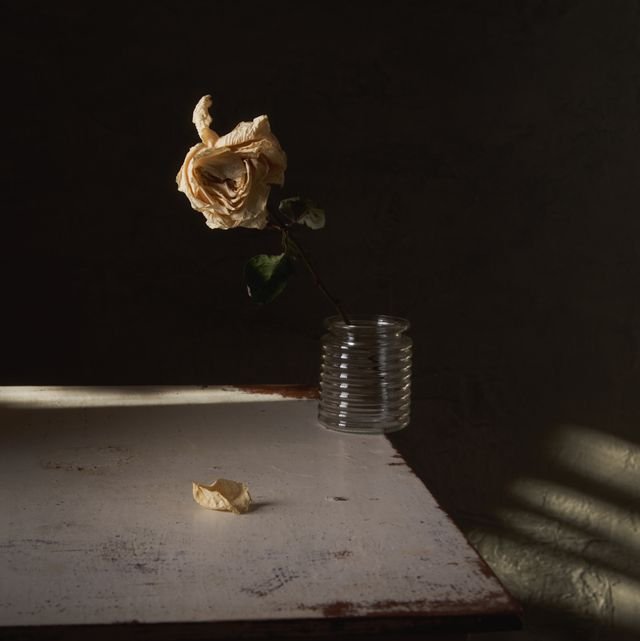 still life with dried rose in a vase standing on the edge of the table