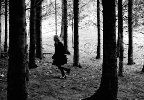 Nature, Natural environment, Monochrome, Monochrome photography, People in nature, Woody plant, Black-and-white, Forest, Darkness, Black,