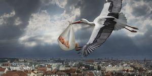 Stork delivering a baby in a bundle