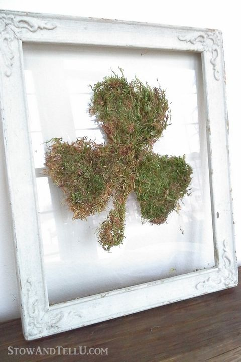 shamrock made out of moss in a distressed white frame sitting on a shelf