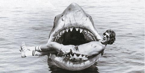 Stranger Things conexión Tiburón