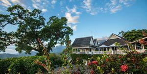 Strawberry Hill Jamaica