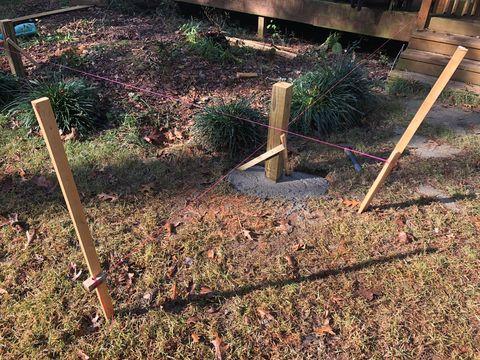 Soil, Tree, Grass, Plant, Garden, Yard, Backyard, Lawn,