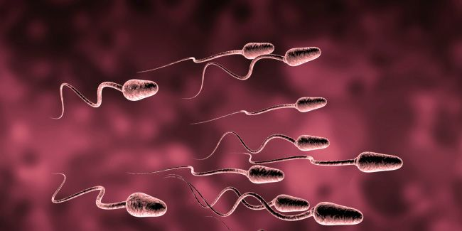 5 Easy Ways to Strengthen Your Sperm Right NOW