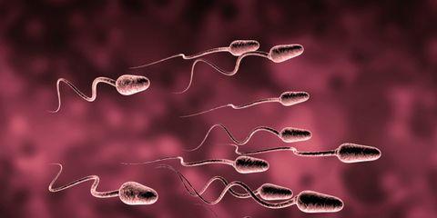 strong sperm
