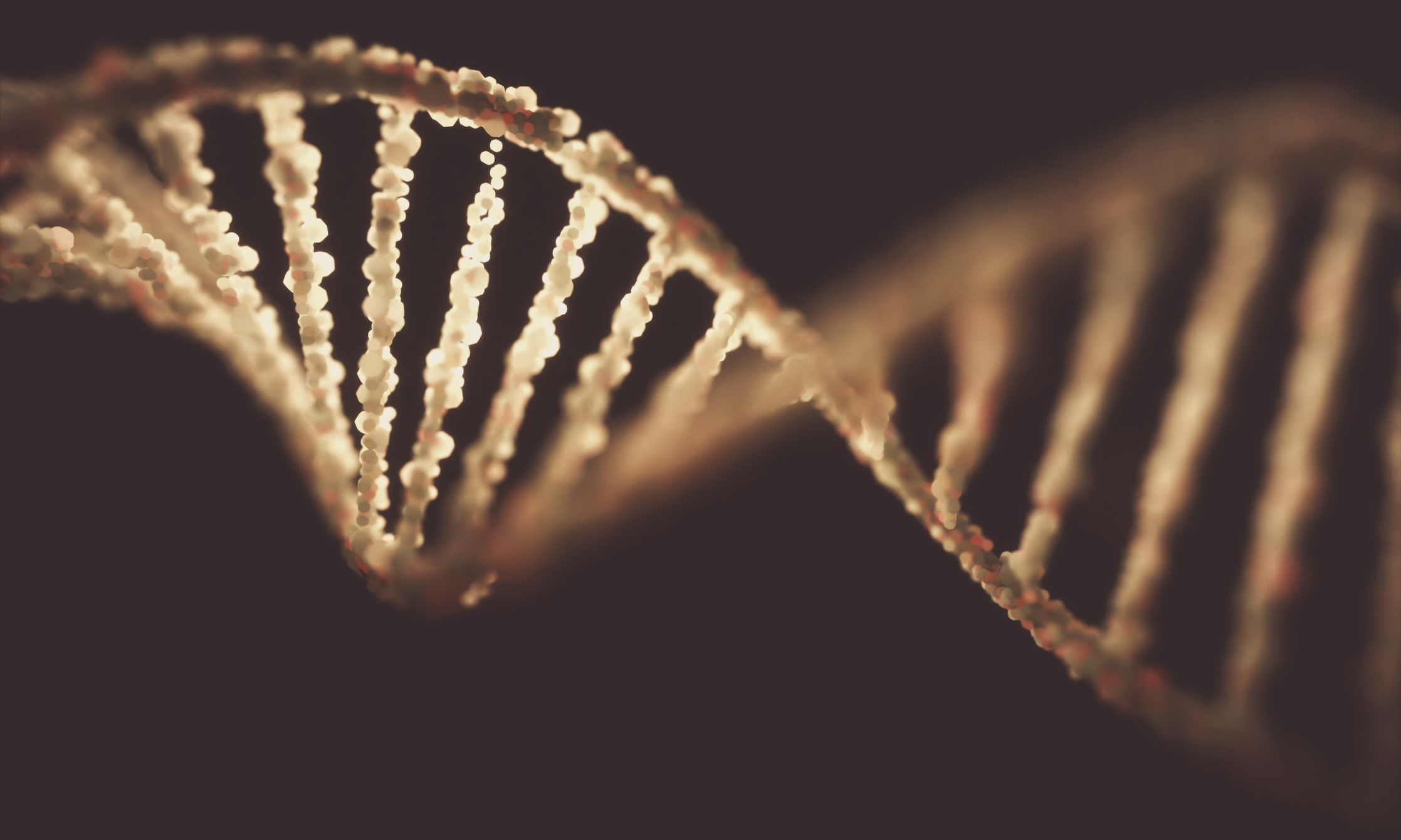 In 'Moon Landing of Genomics,' Scientists Sequence Ancient DNA From Dirt