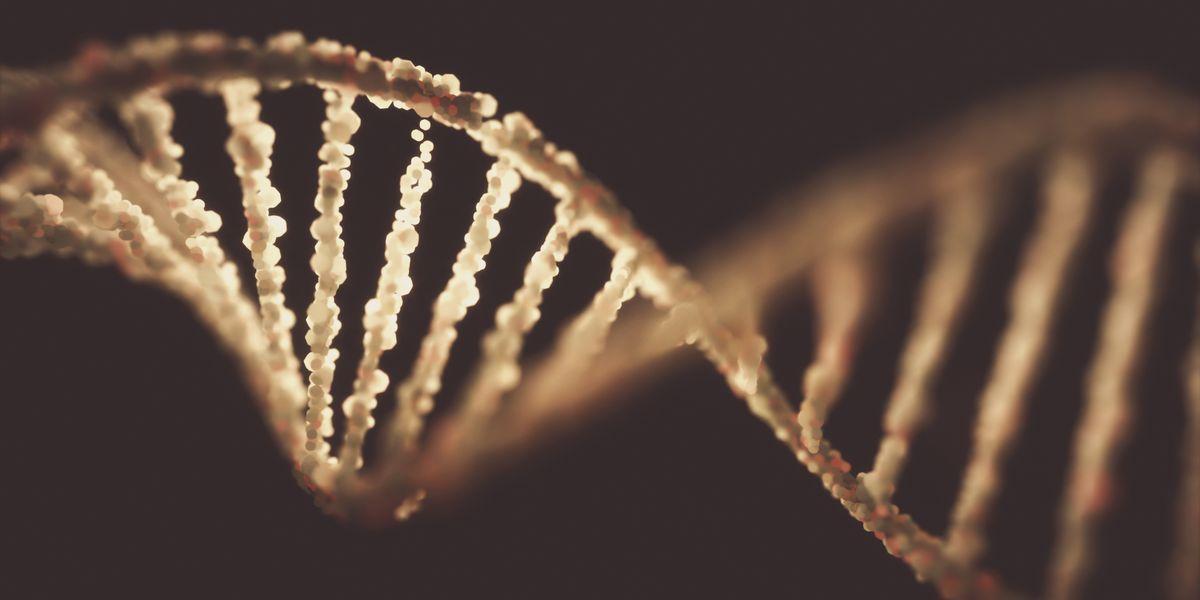"Scientists Seek Dirt DNA: ""Lunar Landing of Genomics"""