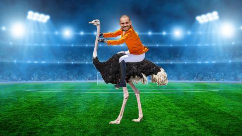 Wesley Sneijder op een struisvogel