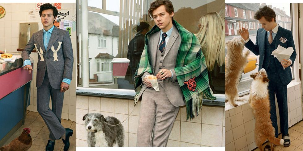 Harry Styles Gucci suits