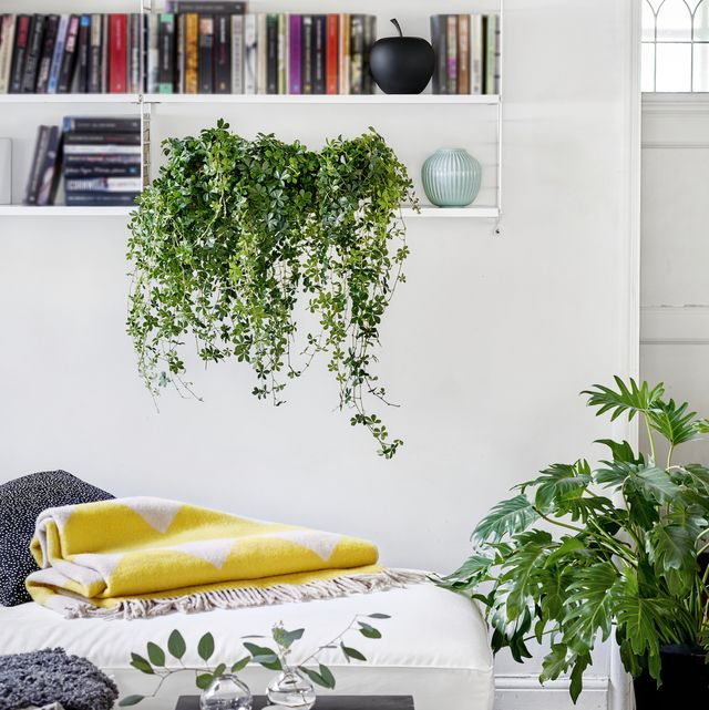 5 interior tweaks to create a positive and happy home