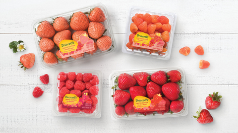 Food, Strawberry, Fruit, Strawberries, Natural foods, Plant, Berry, Produce, Sweetness, Local food,