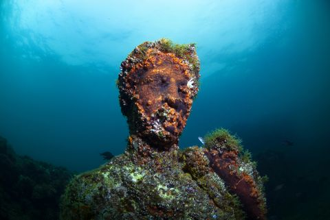 baiae, naples, campania, southern italy   may, 2018 submerged statue head