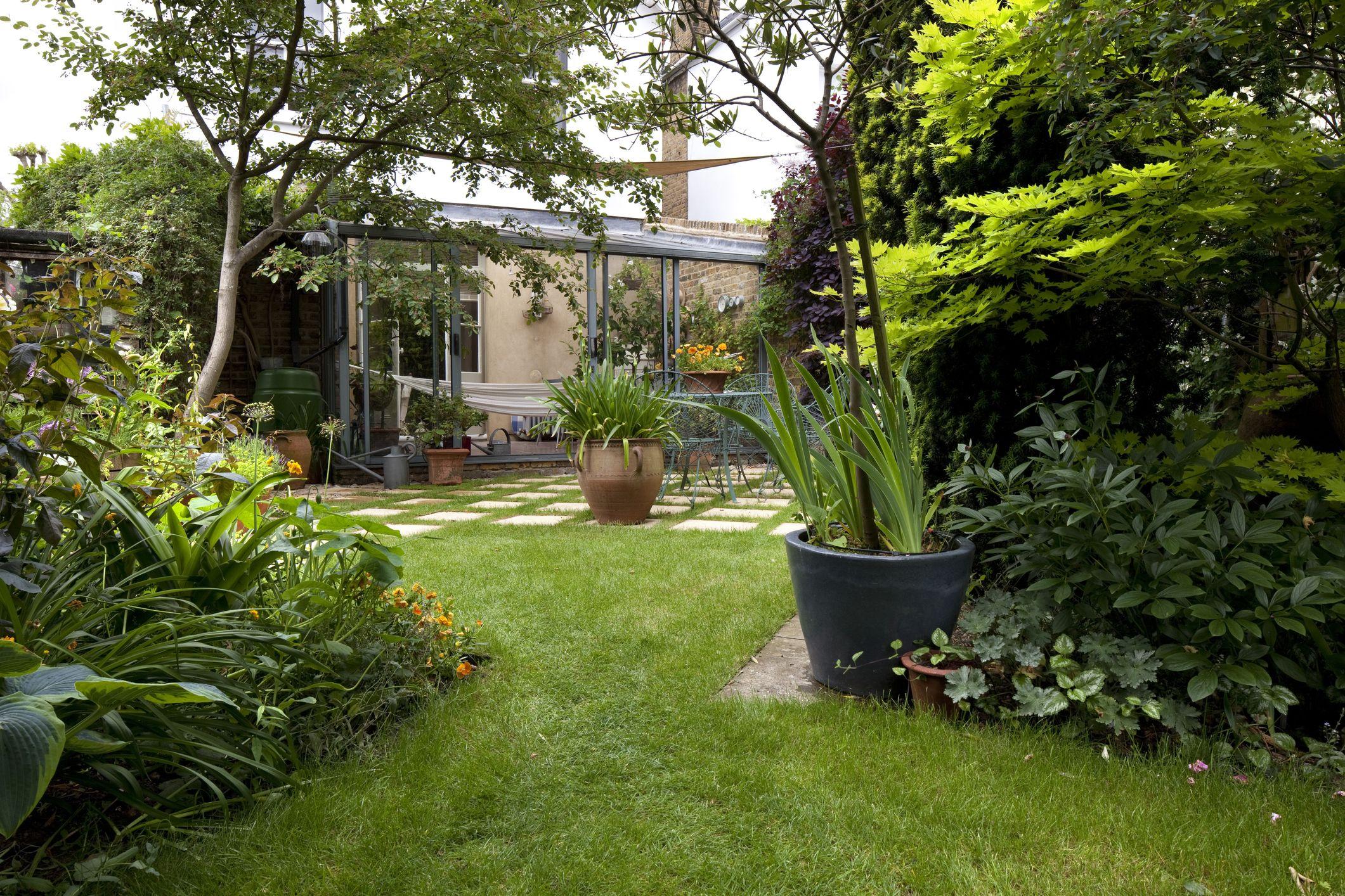 Suburban garden and lawn, Kingston Upon Thames, England, UK