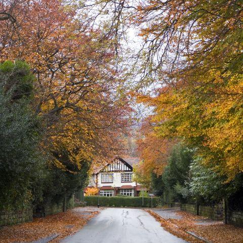 Suburbs in the Fall
