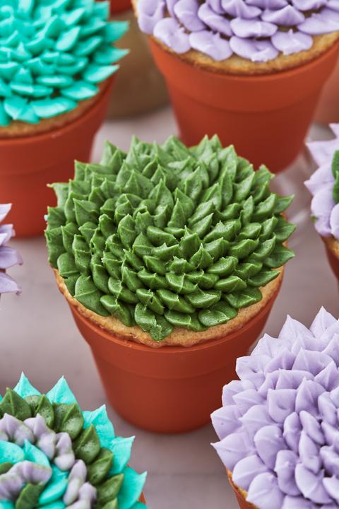 Succulent Cupcakes - Delish.com