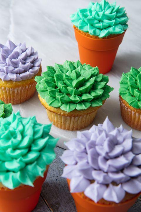 Succulent Cupcakes vertical