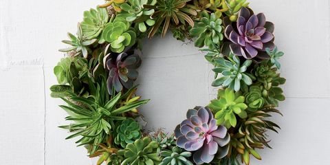 Artificial Succulent Arrangements Hanging
