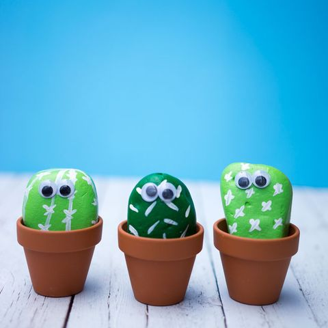 Summer Activities for Kids - Cactus Rock Garden