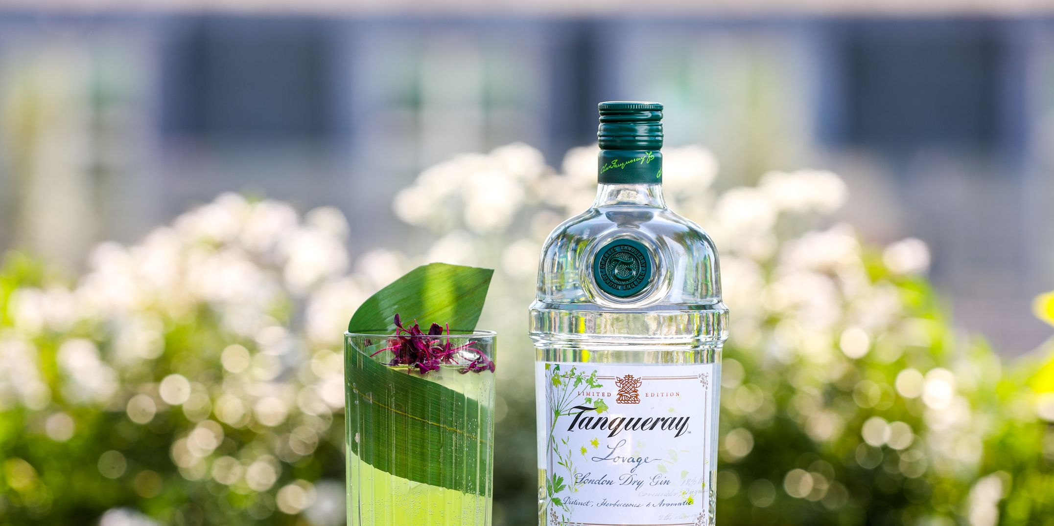 Tanqueray gin lovage