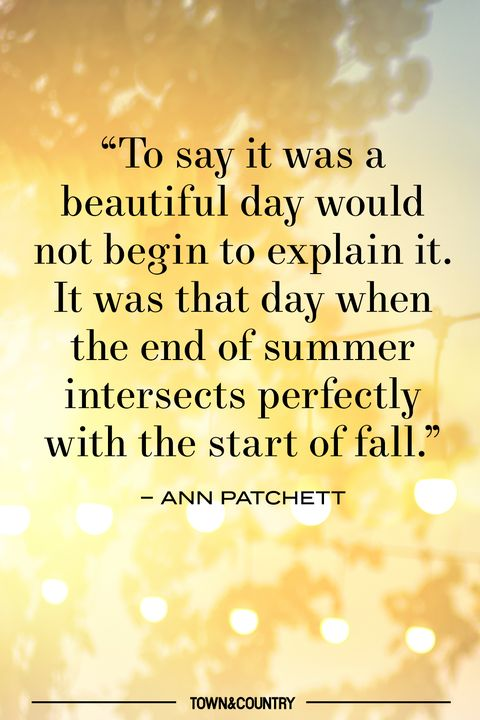 patchett summer quote