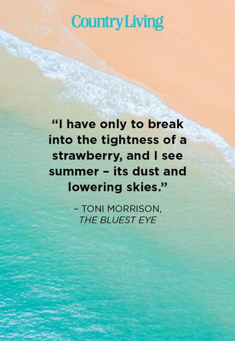 """i have only to break into the tightness of a strawberry, and i see summer – its dust and lowering skies""  – toni morrison,  the bluest eye"