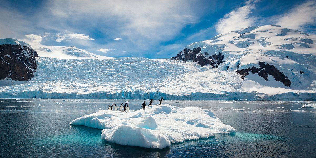 16 mind-blowing photos of Antarctica that will make you want to experience it
