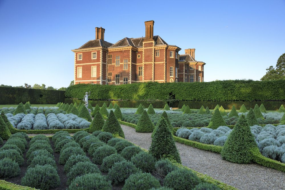 Jackdaws can stop box moth caterpillars destroying hedging and topiary, National Trust say