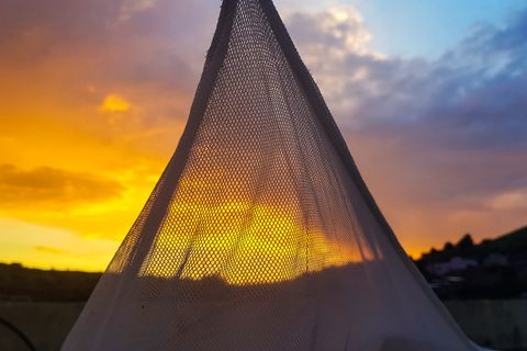 a sunset seen through a mosquito net