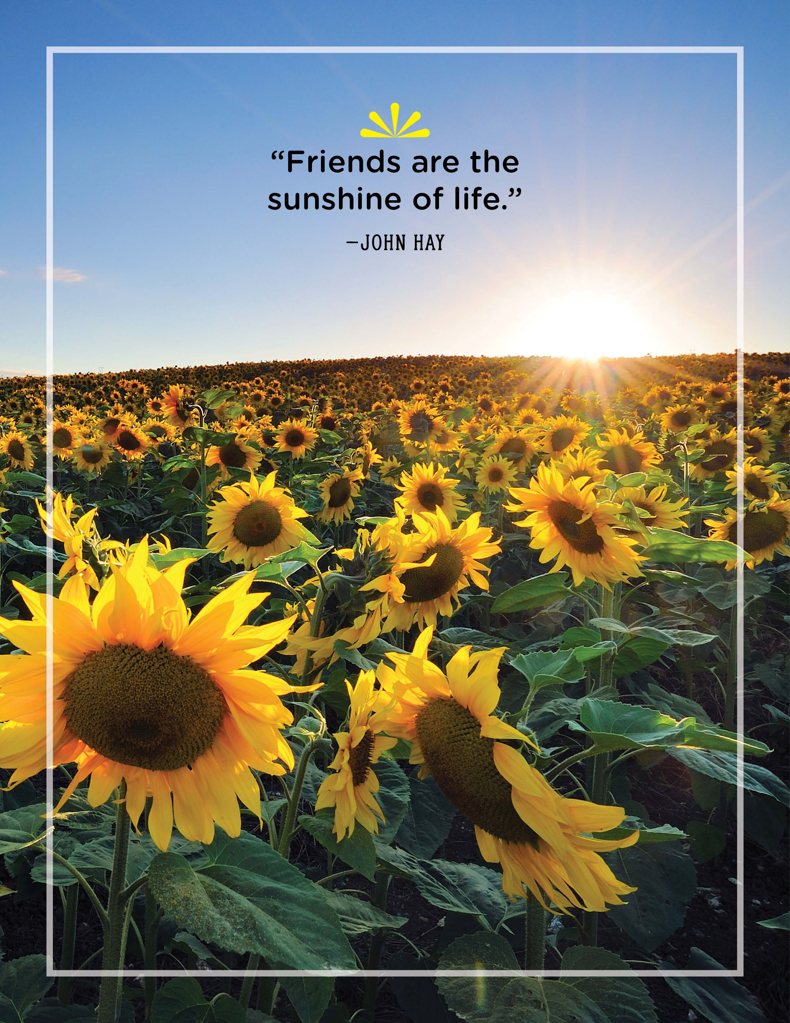 40 Best Sunshine Quotes Wise And Inspirational Sayings